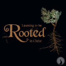 Learning to be Rooted in Christ
